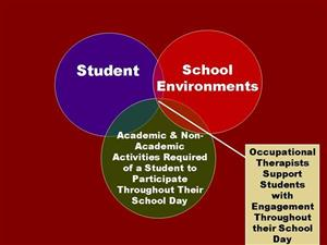 Ven diagram about students and their school environments