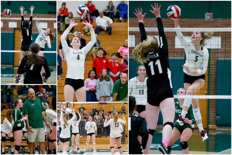 Wilson volleyball collage